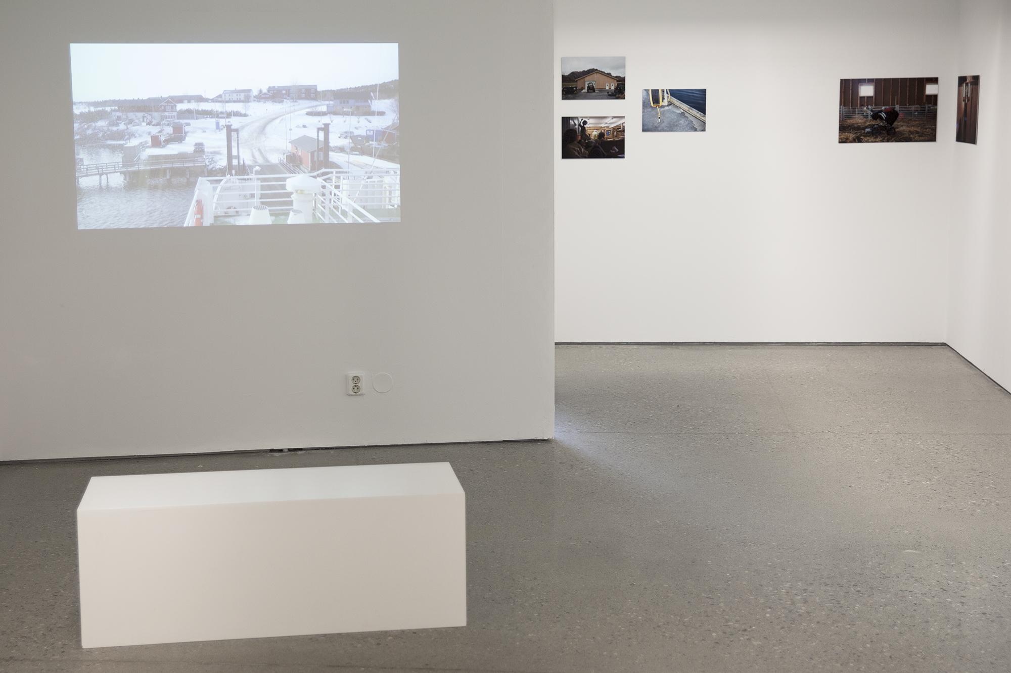 Utstilling, Gråmølna, 2016