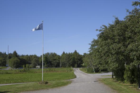Gråstein16
